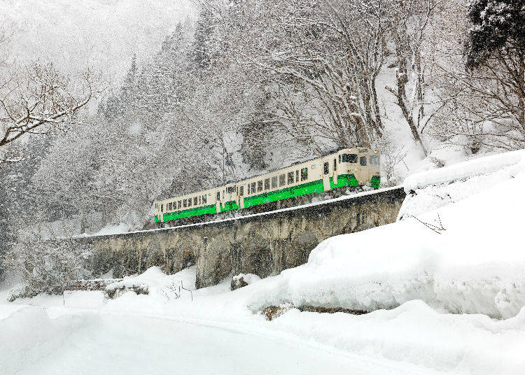 1. Delays and More: Snowfall Impacts Public Transport