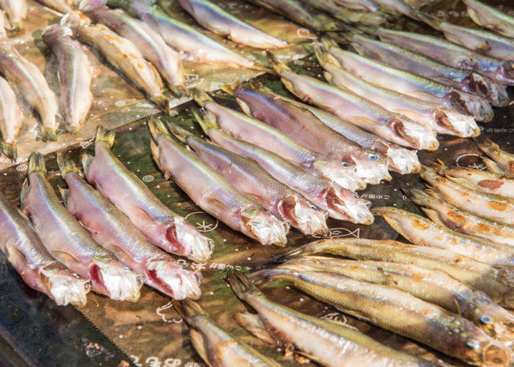 肥厚飽滿、鮮嫩溫醇! 品嘗柳葉魚的美味實力