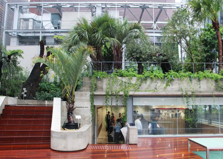 The Plant Hunter's Garden and Toraya Café's Shaved Ice