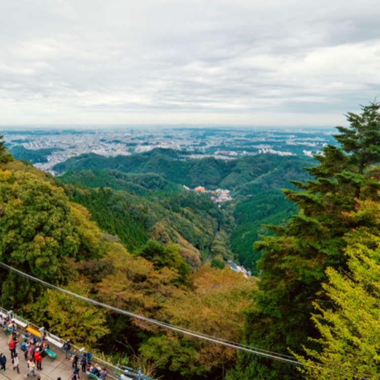 Explore Tokyo's Cutest Mountain! 1-day Plan with Hot Springs, Stunning Scenery, and Beer!