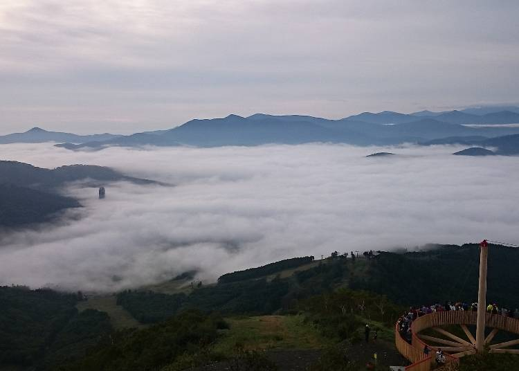 【占冠村】大自然の息吹を体感できる広大な森林に包まれた村