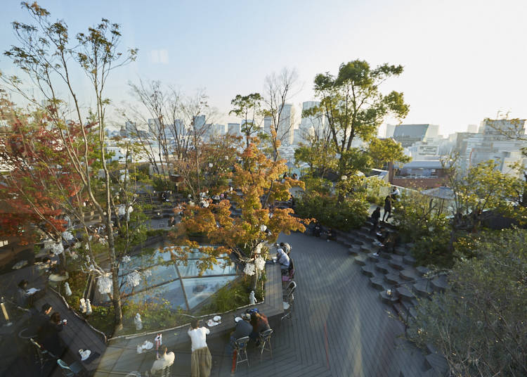 Omohara no Mori: a Green, Calm Oasis in the Middle of the City