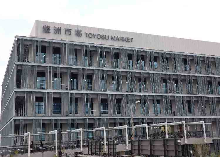 What is the Toyosu Market? Which Areas are Open to the Public?