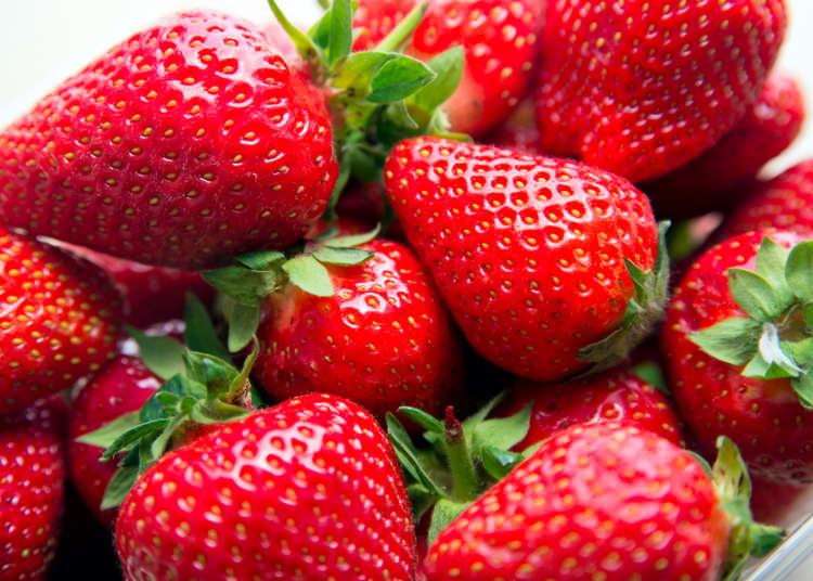 日本草莓季節怎麼挑、怎麼吃?水果達人教你「四種冬天產季水果」小訣竅