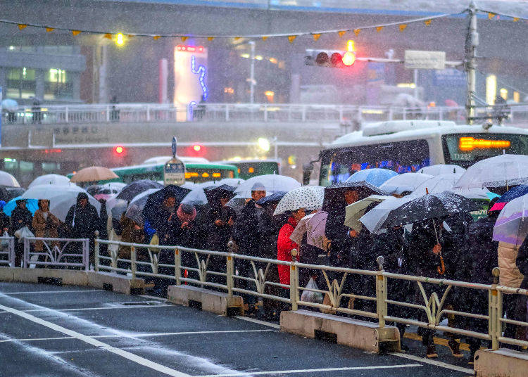 2) What kind of weather conditions must be met in order to see snow in Tokyo?