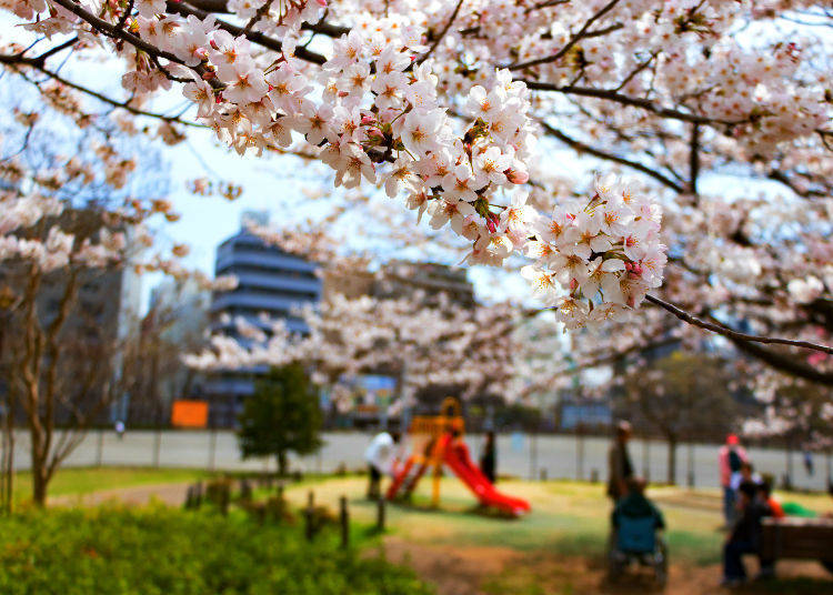 4. An excellent city for child-rearing and family life