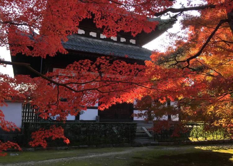 8 – Tofuku-ji – Kyoto