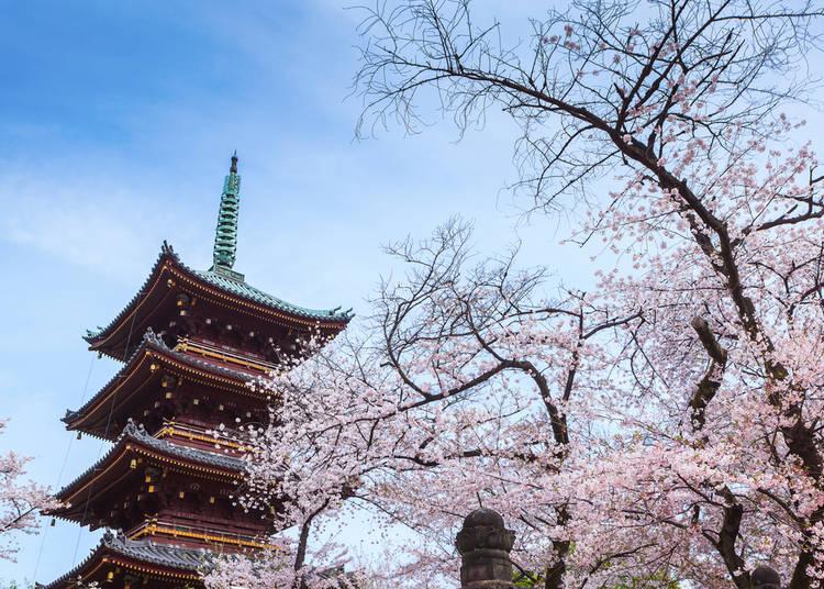 #15. 上野恩賜公園 - Ueno Park (210.8k Photos)