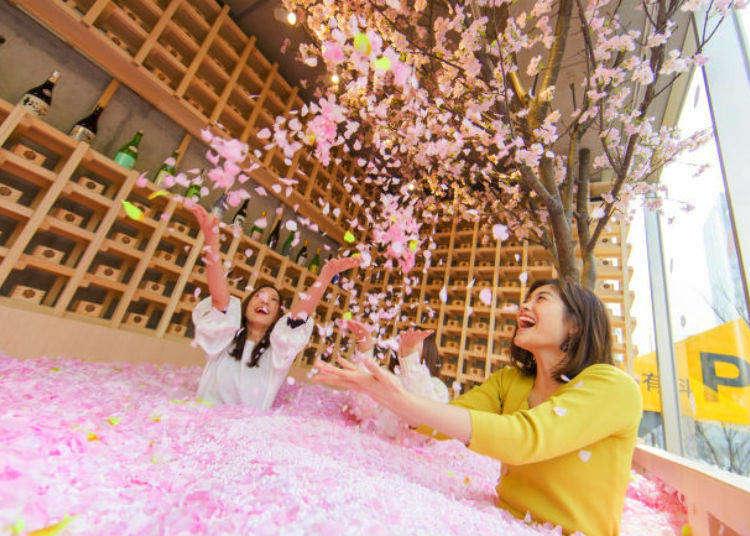 Sakura Chill Bar: Cherry Blossom Bar with Sakura Petal Pool Opening in Tokyo!