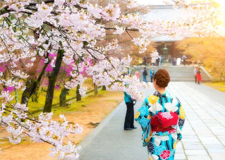 도쿄 날씨 - 2019년 3월,4월,5월 날씨&옷차림,볼거리까지..!