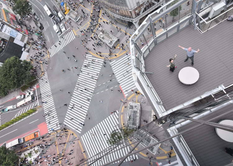 11. 'Swim' in the Shibuya Scramble Crossing and watch the hypnotic movement of people