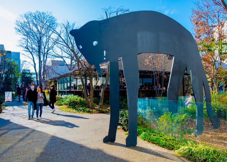 A luxury residential area that leads and innovates: Daikanyama