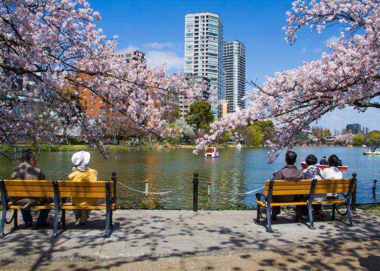 桜だけじゃない!東京・上野公園で楽しめる「四季の花」の見どころとイベントガイド