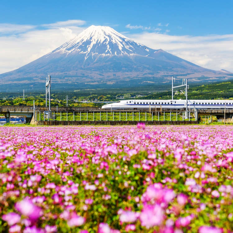 Top 10 things to Do in Japan May 2019!