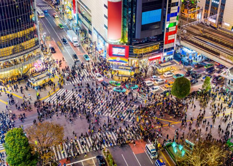 Shibuya At A Glance