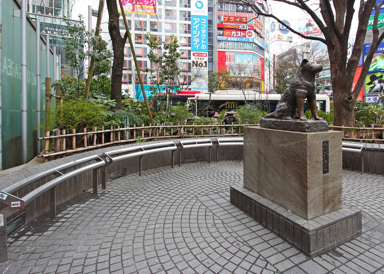 Things to Do in Shibuya