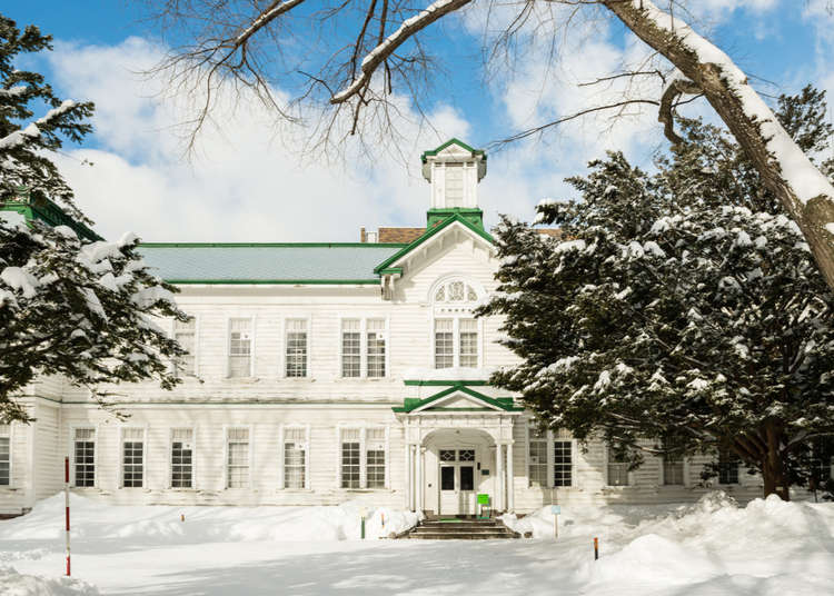 Visit the Hokkaido University Campus—a must on any tour of Sapporo!