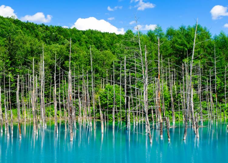 3白金 青い池