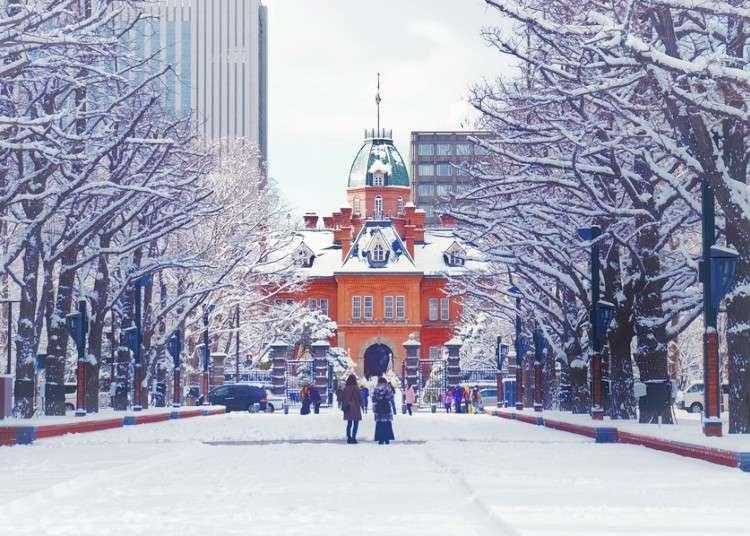 Breathtaking Hokkaido Views & More! 5 Must-Visit Spots in Sapporo