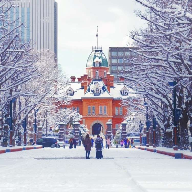 5 Must-Visit Spots in Sapporo!