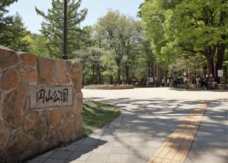 札幌市民的休憩好去處「円山公園」