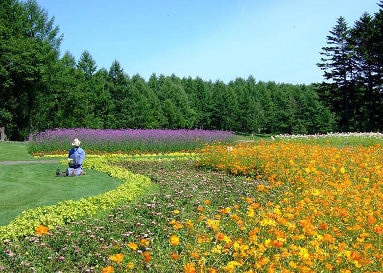 4. Garden, café, activities… Freely enjoy the use of the picnic garden!