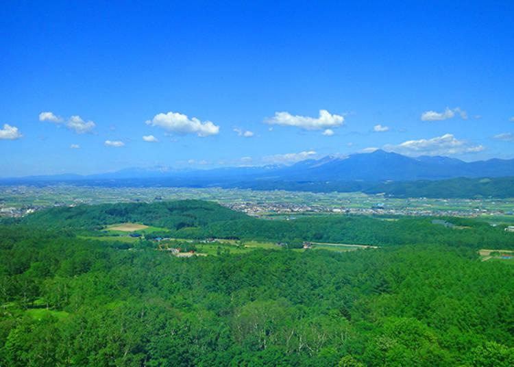 魅力1)夏は十勝岳側、冬は北の嶺側が狙い目!客室から望むパノラマが素晴らしい