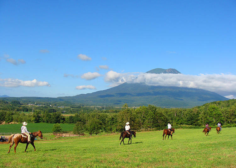 K2 Stable: Enjoy Niseko's Majestic Outdoors on Horseback