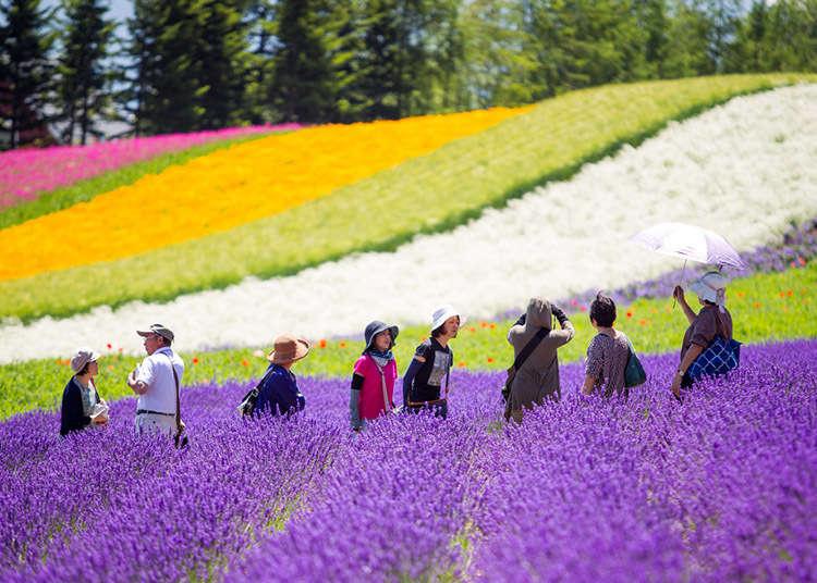 홋카이도 날씨(3월부터 8월까지)와 맞는 옷차림! 홋카이도 시즌이 온다..!-【홋카이도 봄, 여름편】