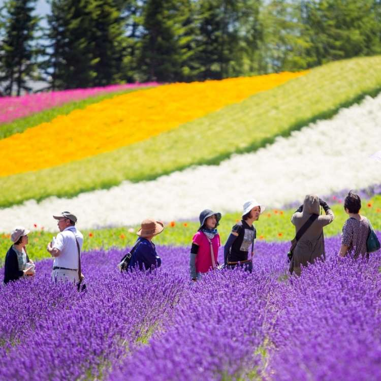 Spring and Summer in Hokkaido: The Ultimate Guide to Hokkaido Weather and the Clothes You Need!