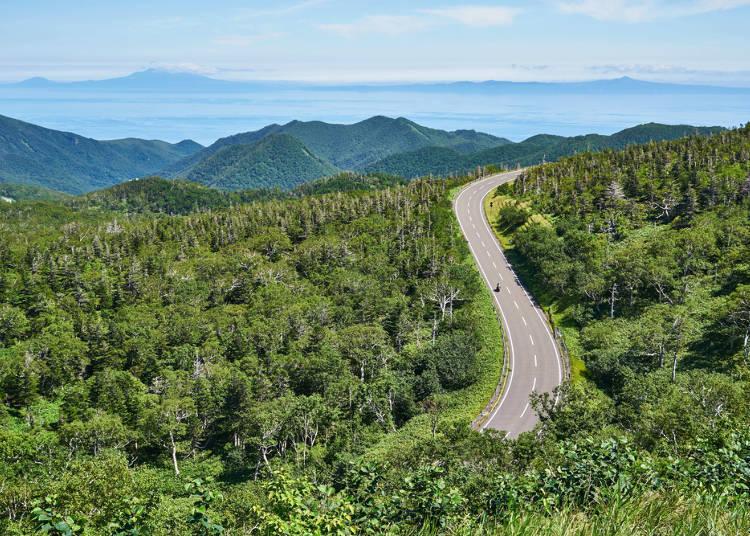 1. 홋카이도는 도쿄나 오사카와 비교해 매우 넓다! 여유 있는 계획을 세우자