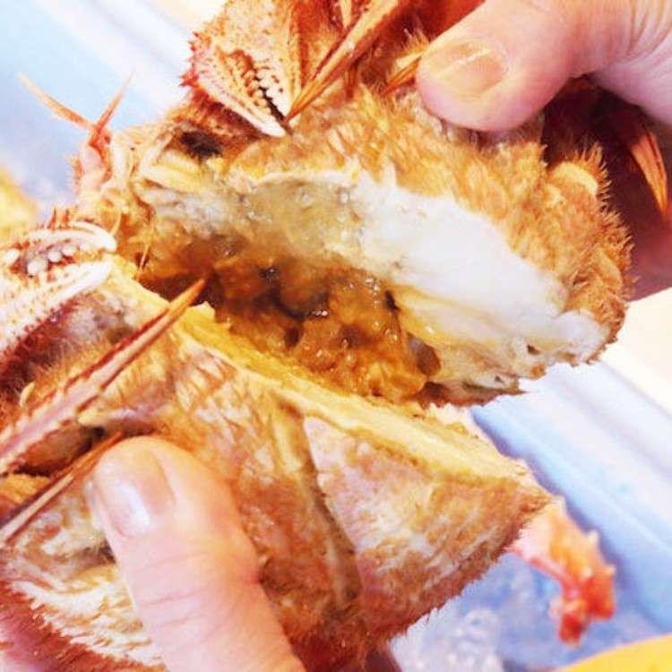 삿포로 중심부에서 걸어서 갈 수 있는 [니조시장]에서 해산물을 맛보자!