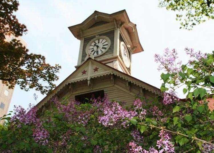 삿포로시 시계탑의 촬영 포인트와 볼거리, 즐기는 방법을 추천한다.