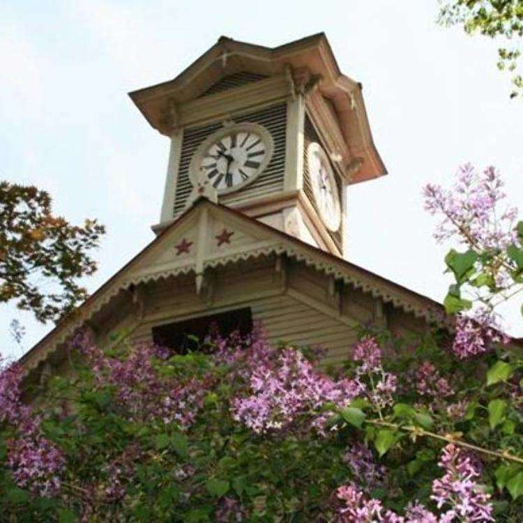 What's the best way to enjoy taking photos of the Sapporo Clock Tower?