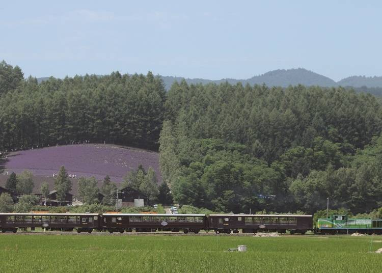 Feel the wind within the lavender fields! Seasonal Railway 