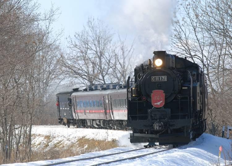 A train of winter wonderland! Seasonal railway