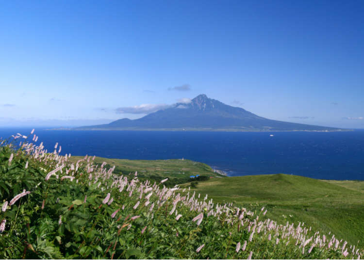 Exploring Hokkaido's Rebun Island: 7 superb views in Japan's far north!