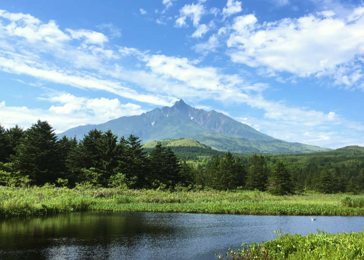 Journey to the magnificent scenery around Mt. Rishiri (pictured on the Shiroi Koibito package)!