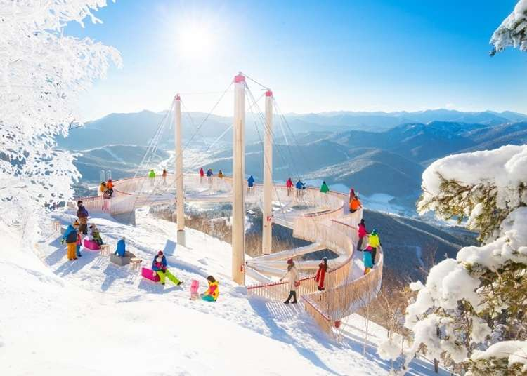 Muhyo Terrace: Check out these incredible frozen winter landscapes in Hokkaido!
