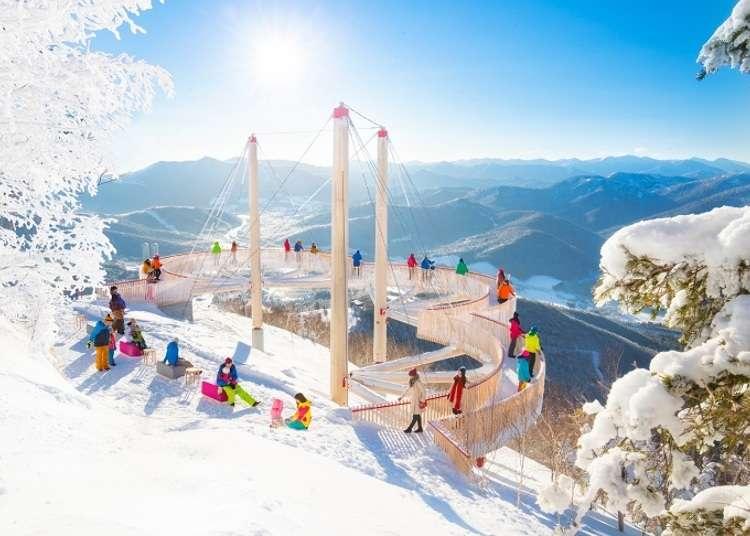 零度以下的大自然艺术! 「雾冰平台」的美景体验