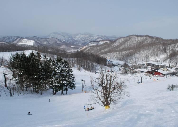 ■札幌盘溪滑雪场