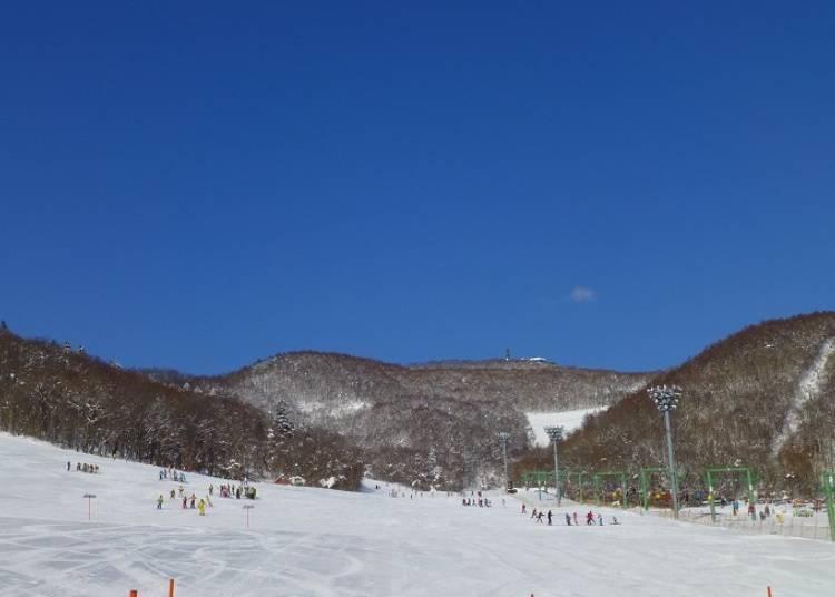 ■札幌藻岩山滑雪場
