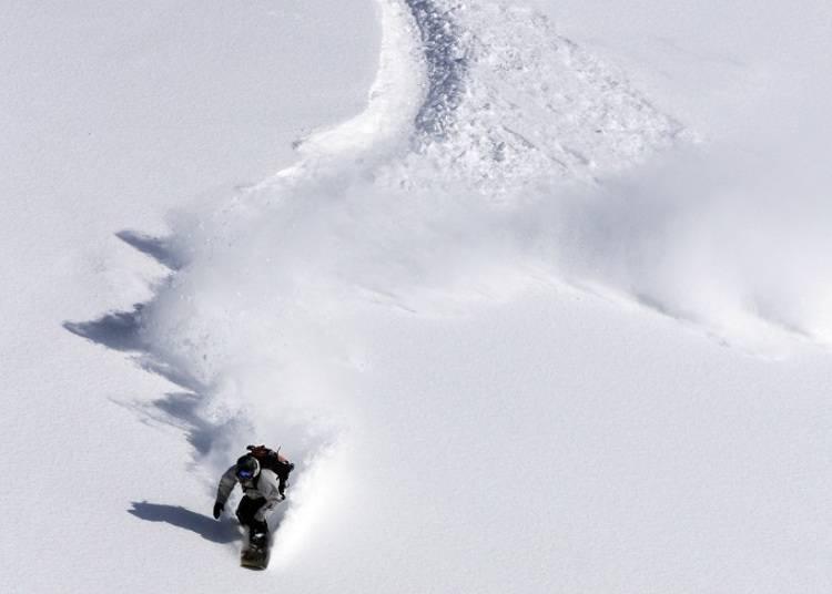 ■在宽广的滑雪场享受最顶级的粉雪
