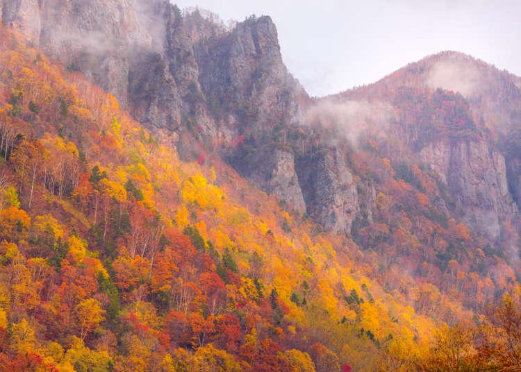 漫步空中!北海道层云峡必访景点「黑岳空中缆车」眺望大雪山山脉美景
