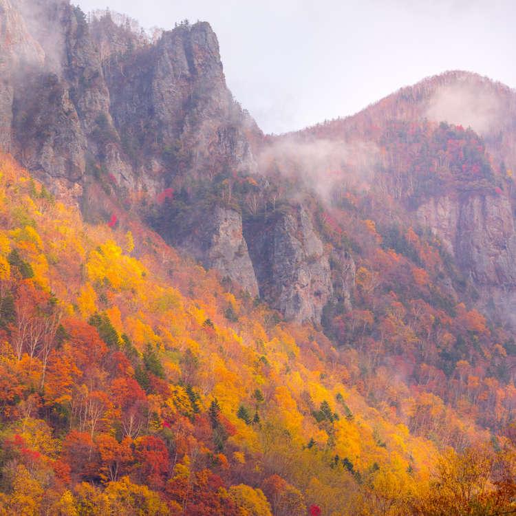 層雲峡を訪れたら絶対行きたい! 大雪山系の山々を望む黒岳ロープウェイで空中散歩