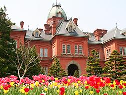 Sapporo / Chitose:Gambaran keseluruhan dan Sejarah