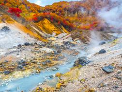 登別・洞爺湖の概要・歴史