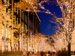 Early November to mid-February: Marunouchi Illuminations