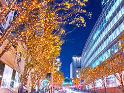 Early November to late December: Keyakizaka Illuminations