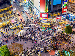 Shibuya:Overview & History